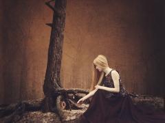 Stanislav Fehér - Tajomstvá lesa