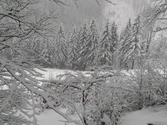 Juraj Kravárik - Pokrývka snehu v prírode je rozprávkové