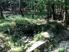 Leonard Lörincz - Na lesnej čistinke